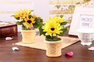 Hoa hướng dương để bàn làm việc